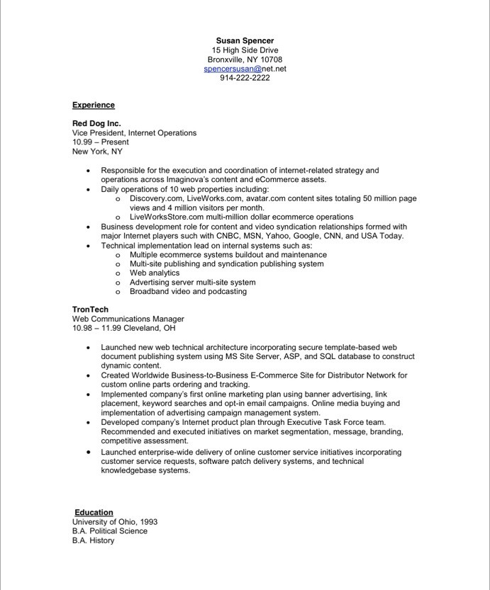 Executive Resume Makeover Digital Media Executive  Blue Sky